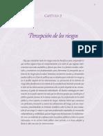 PERCEPCION DEL RIESGO.pdf