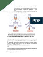 Trastorno Mineral Oseo Asociado a Enfermedad Renal Cronica