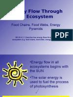 food webs - field ii unit plan powerpoint