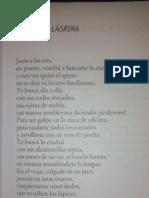 J_Boccanera_=Marimba=_LA SEIS Y LAGRIMA