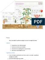 Biologia-Plantas