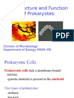 02 cell structure and function of prokaryotes (student).pptx