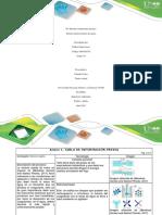 Pre Informe Componente Práctico
