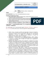 DM.03Responsabilidades y Funciones MEI
