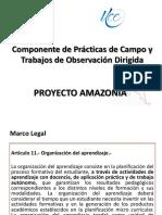 proyecto amazonía 2017