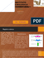 REGISTRO SONICO.pptx