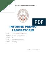 informe-previo.docx