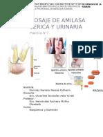 dosaje de amilasa serica y urinaria.docx