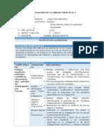 CTA - Planificación Unidad 4 - 1er Grado