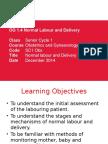 OG 1.4_Normal Labour + Delivery_Jan 2015.pptx