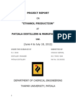 170630949-ETHANOL-PRODUCTION.doc