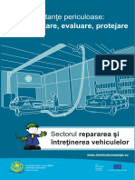BROCHURE_MVR_ROMANIA_final(3).pdf