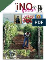 Vino 2011web