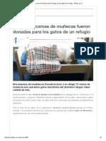 Adorables Camas de Muñecas Fueron Donadas Para Los Gatos de Un Refugio - 4Patas.com
