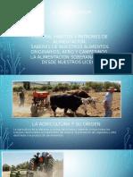 Clase de Agroecologia