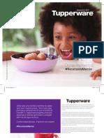 Vitrine 4.2017 Tupperware.pdf