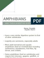 Digestive Amphibians