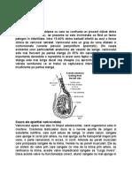 VARICOCEL.doc