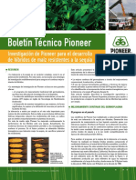 Boletin Pioneer 05
