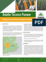 Boletin Pioneer 03