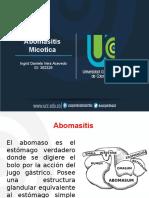 Abomasitis micotica