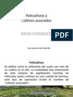 Policultivos y asociación.pdf