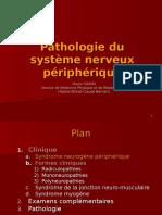 Polynevrite Pathologie Musculaire PRN_IFSI