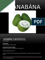 Guanabana Para Vania