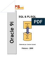 Manual Oracle.pdf