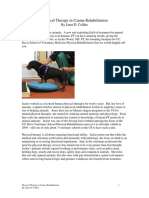 Physical Therapy in Canine Rehabilitation.pdf