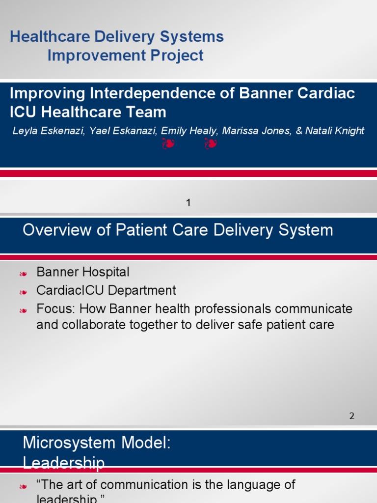 qip dream team project   Nursing   Health Care