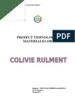Proiect-Tm-Colivie-Rulment.doc