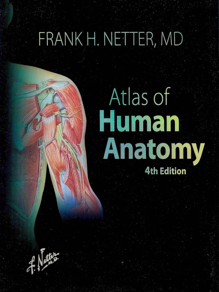 Atlas of Human Anatomy 4th ed by Frank H. Netter.pdf | Skull ...