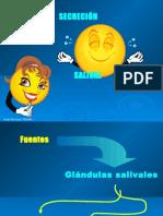 2_Saliva