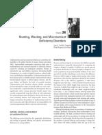 DCP28.pdf