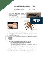 88935652-Examen-Ciencias-Naturales-1o-ESO-Tema-5.pdf