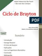 ciclodebrayton-140113190248-phpapp02