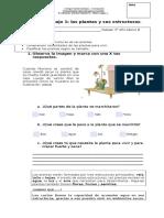 Guia 1 de Aplicacion de Contenidos Las Plantas y Sus Estructuras