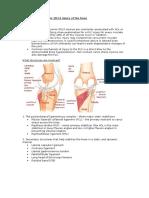 PLC Injury