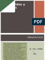 1.c.aminoácidos y Proteínas