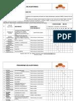 Programa de Auditorias - Cuadros