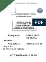 Árbol de causas y efecto de CC.PP valle hermoso-JEPELACIO.docx