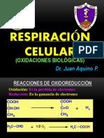 Oxidaciones Biologicas Medicina 2017a