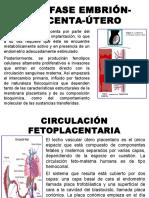 INTERFASE-EMBRIÓN-PLACENTA-ÚTERO (1).pptx