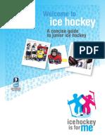 Welcome to Ice Hockey English