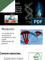 Mutagenesis Bueno 1