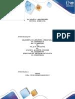 Informe de Práctica química ambiental