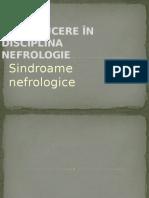 Nefrologie introducere prelegere.pptx