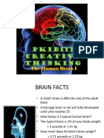 Week2 the Human Brain 1