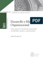 Desarrollo y eficacia organización - Andres pucheu